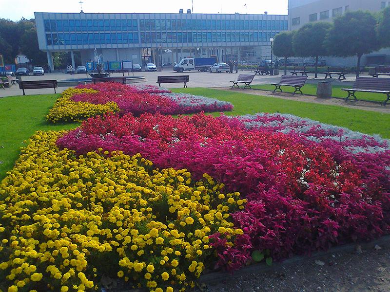 kwiaty 004